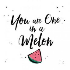Wenskaart You are one in a melon Joy