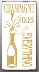 Magneet: Champagne fixes everything. EM5329